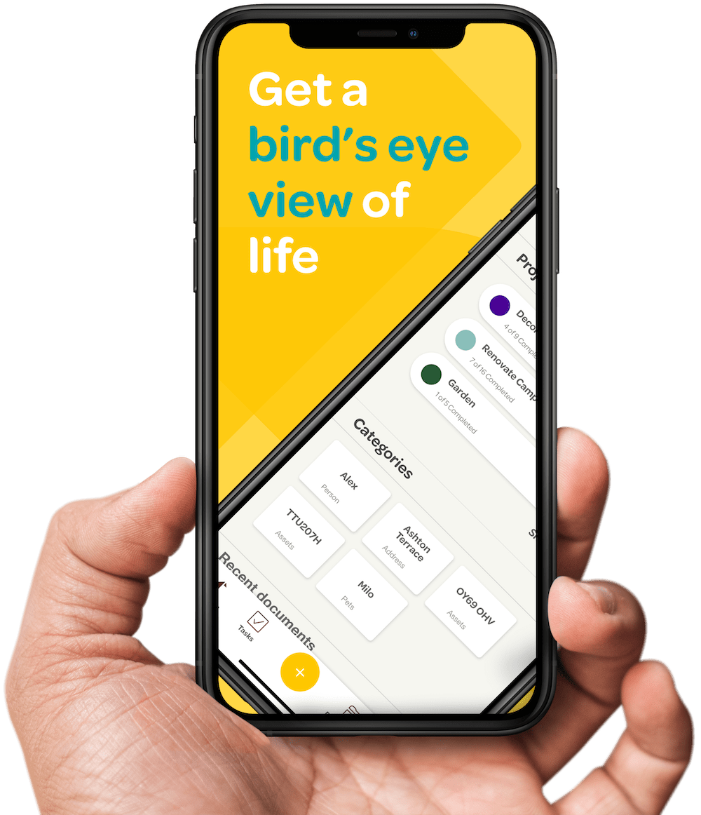 iPhone 11 Pro - Get a bird's eye view of life